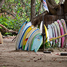 Surfing Lessons in Cabarete