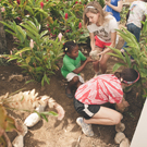 Environmental Citizenship in the Dominican Republic